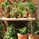 easy and free herb garden design ideas