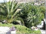 ... Garden Design Mediterranean Herb Garden – Home Design Ideas