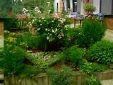 & Garden Information Center: Herb Garden Design Ideas | Herb garden ...