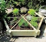 Herb garden design and planting ideas