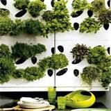 Herb garden wall | Garden design ideas for 2012 | Garden | PHOTO ...