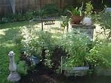 Landscaping Ideas > Garden Design > Pictures: Herb Garden