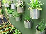 New2World: Herb Garden Ideas for Small Spaces