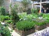 Vegetable Garden Design Herb Garden Design Plans – Home Design Ideas