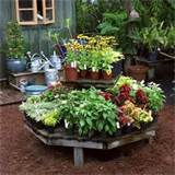 herb garden design small herb garden design ideas remodeling