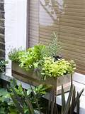 diy herb window box diy small garden landscape design