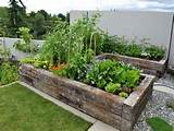 formal sleeper vegetable and herb garden small herb garden