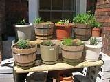 ... to Ensure Your Herb Container Garden Success « Home Design Gallery