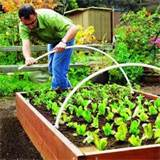 raised bed garden ideas tips and tricks to raised bed gardening