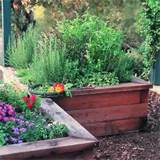 raised box herb garden sunset