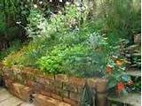 outdoor raised herb garden design layout picture