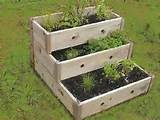 trend for home gardens, here is a great little HERB CONTAINER GARDEN ...