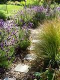 Informal herb garden design | Tim Austen Garden Design
