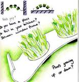 sketch herb garden design