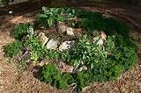 Garden blueprints: Herb spiral garden!