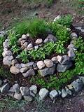 this summer a spiral herb garden home and hoareticulture