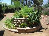 savvyhousekeeping herb spiral efficient gardening small space