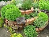 this herb garden design brings creativity and usefulness to the yard