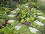 Herb Garden | Edible : Garden Galleries : HGTV - Home & Garden ...