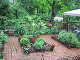 proceed into the herb garden with culinary and medicinal herbs