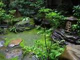 Zen Garden | Gardening Tips | Garden Guides