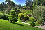 Love of Japanese Gardens | Confero Dezso