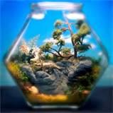 Zen Miniature Garden | outdoortheme.com