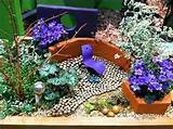 e71b5 miniature garden looks like colorful park Zen Miniature Garden