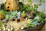 miniature zen garden close up miniature japanese tea garden with ...