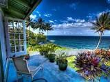 Dramatic Tropical Design