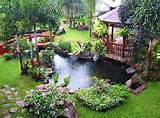 Garden Design 2011: Tropical Garden Design