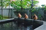 Tranquillity of Tropical Garden.jpg