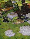 design backyard zen garden