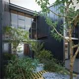 Modern architecture zen garden