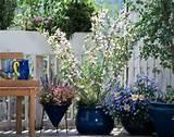 spring inspiration patio garden designs for apartment and backyard