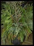 ... garden design, shade garden design, zen garden design, rain garden