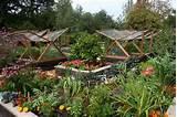of gardens in addition to a vegetable garden such as a zen garden