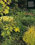 ... Garden Design | Michael Bates - English Country Garden Design, Inc