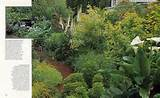 ... Shade Gardening | Michael Bates - English Country Garden Design, Inc