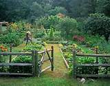 potager garden country living