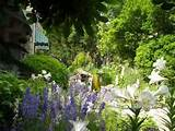 english cottage style gardens greeneraustin com