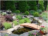 landscape garden designs santolinas furthermore flower abundantly