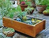 creative water garden ideas with unique pots home decor book