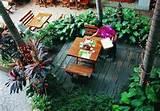 unique tropical garden design ideas