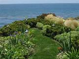 design ideas landscape design ideas view garden 300x225 8 landscape