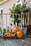 Rustic Outdoor Halloween Decorations | IdealHomeGarden.com