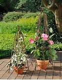large set of pyramid garden trellis