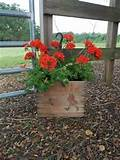 garden decor planter storage primitive cabin barware bar decor