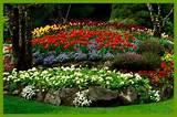 landscaping landscape design installation mandeville la