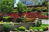 free garden designs ideas landscaping photos